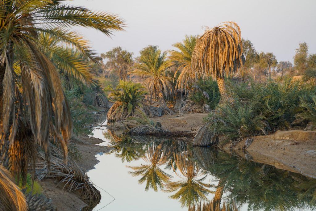 Reisroute Oman - De oase bij Muqshin