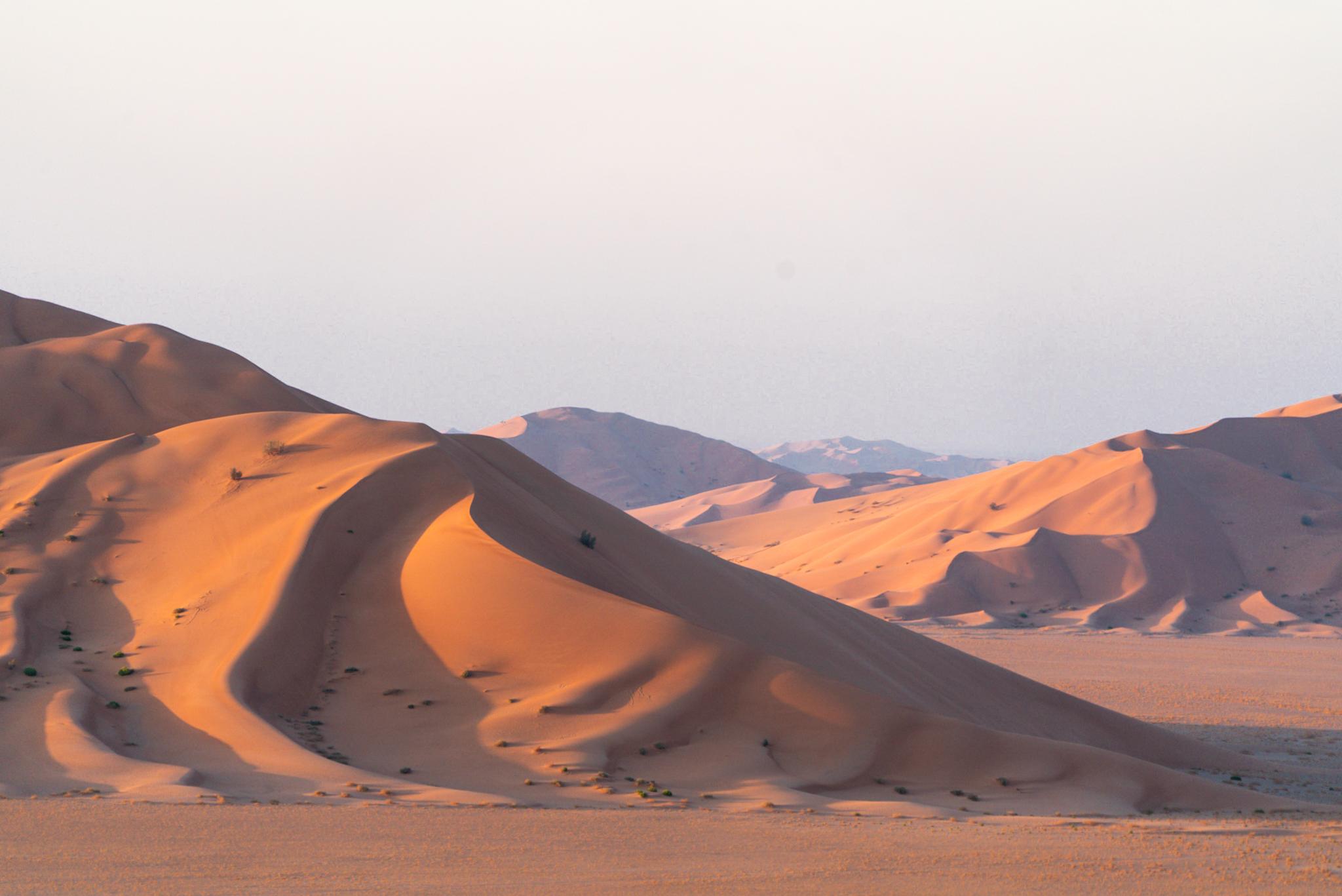 Oman in Vier Weken