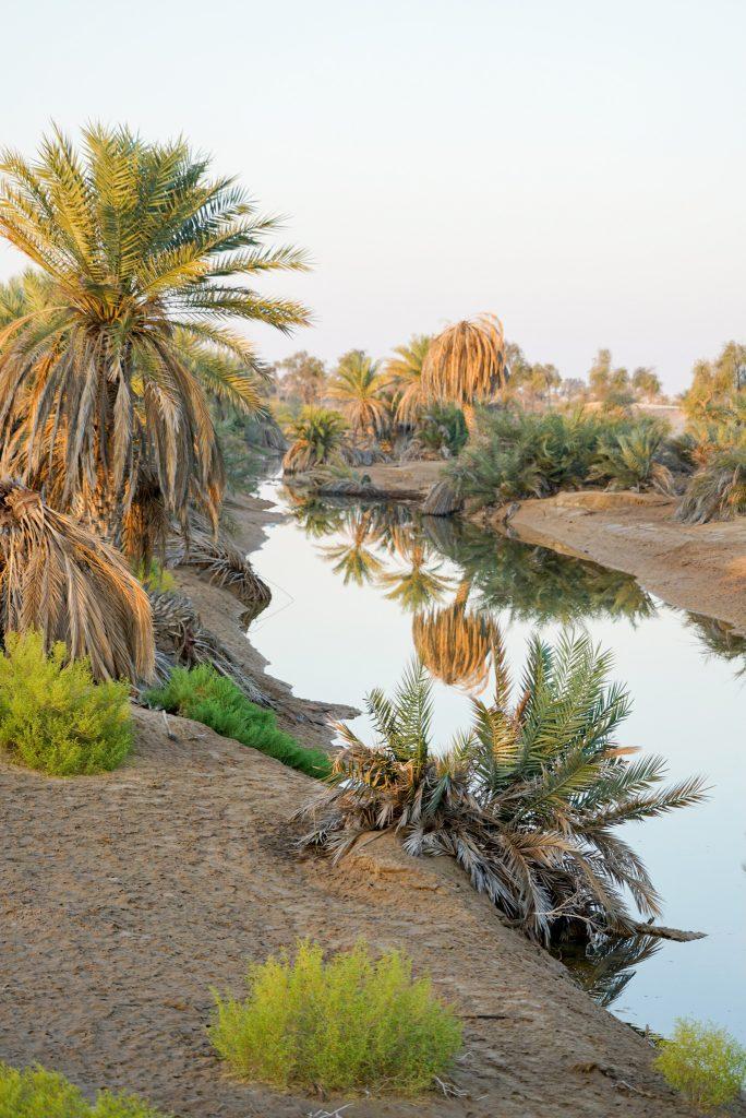 De Rub al Khali - Het Lege Kwartier - Muqshil oasis
